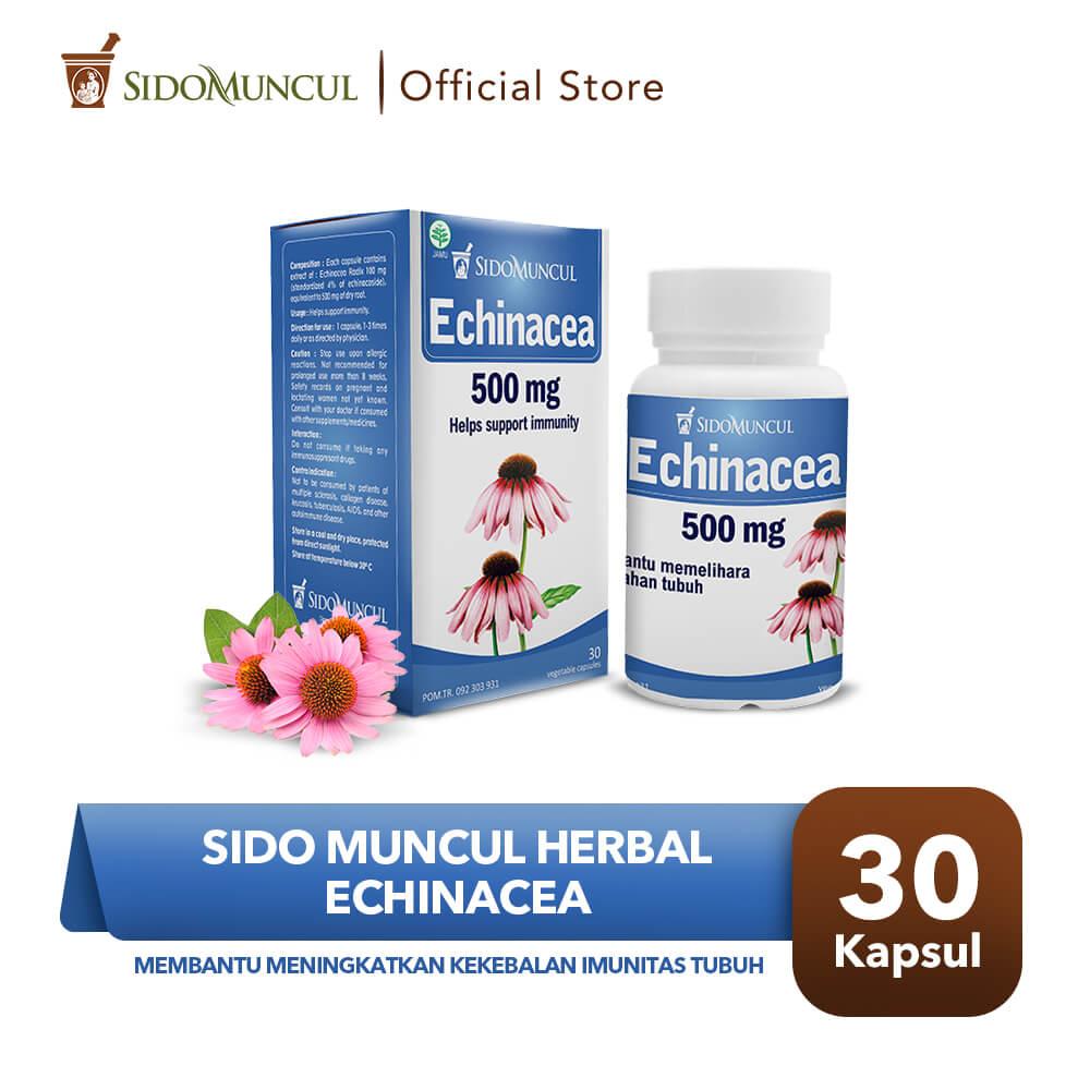 Sido Muncul Herbal Echinacea 30 Kapsul - Kekebalan Imunitas Tubuh